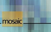 new-mosaic-slide